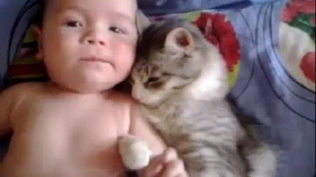 This cats meets a baby for the first time